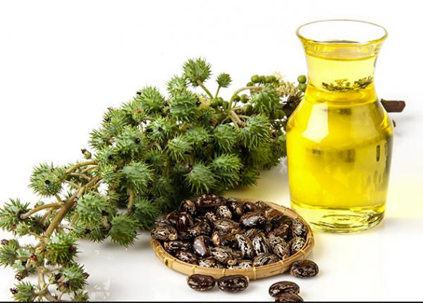 Оценка условий хранения и процедуры обработки полиоксил касторового масла в качестве источника потенциальных критичных свойств материала, относящихся к аспектам качества через разработку